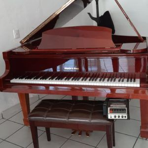 schafer sons piano mexico